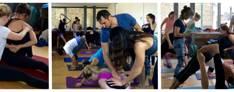 Yoga Adjustment Workshops