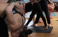 Ashtanga Yoga Primary Series Adjustment Training May 2017