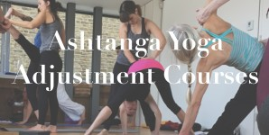 Ashtanga Yoga Primary Series Adjustment Training
